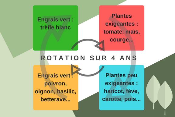 Un exemple de rotation des cultures sur 4 ans