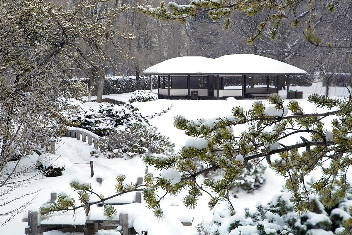 jardin botanique activité hiver © Espace pour la vie (Claude Lafond)