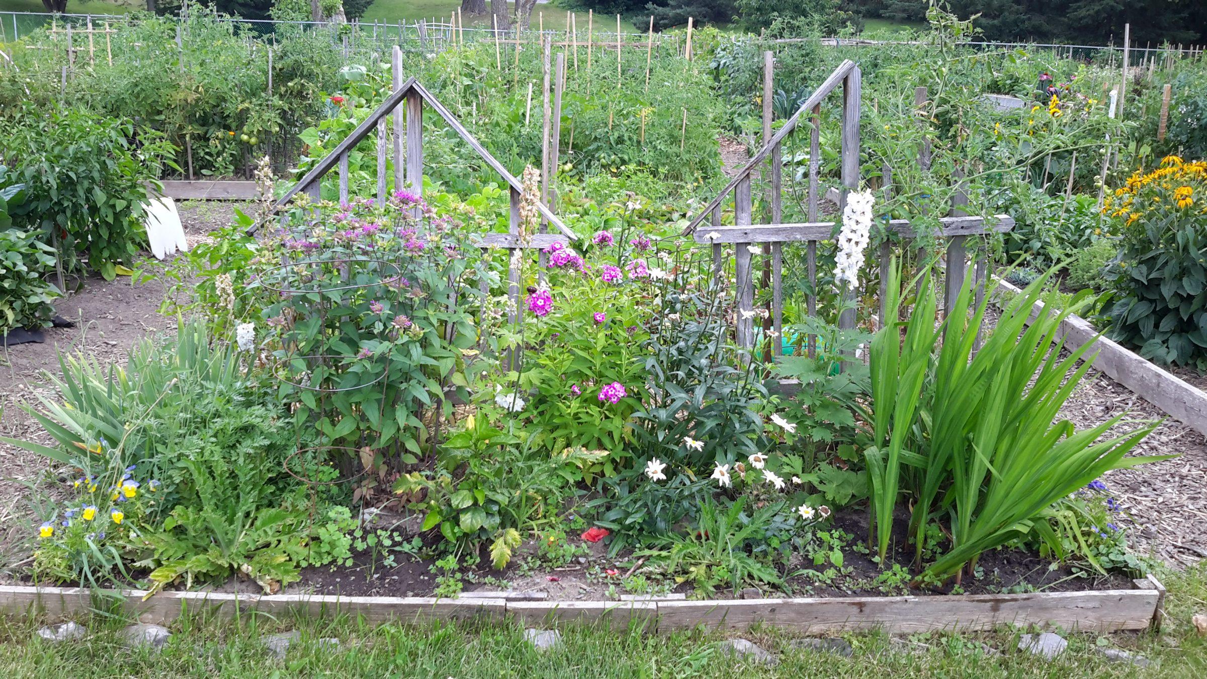 Le jardin écologique Photo de Pierre Vessier