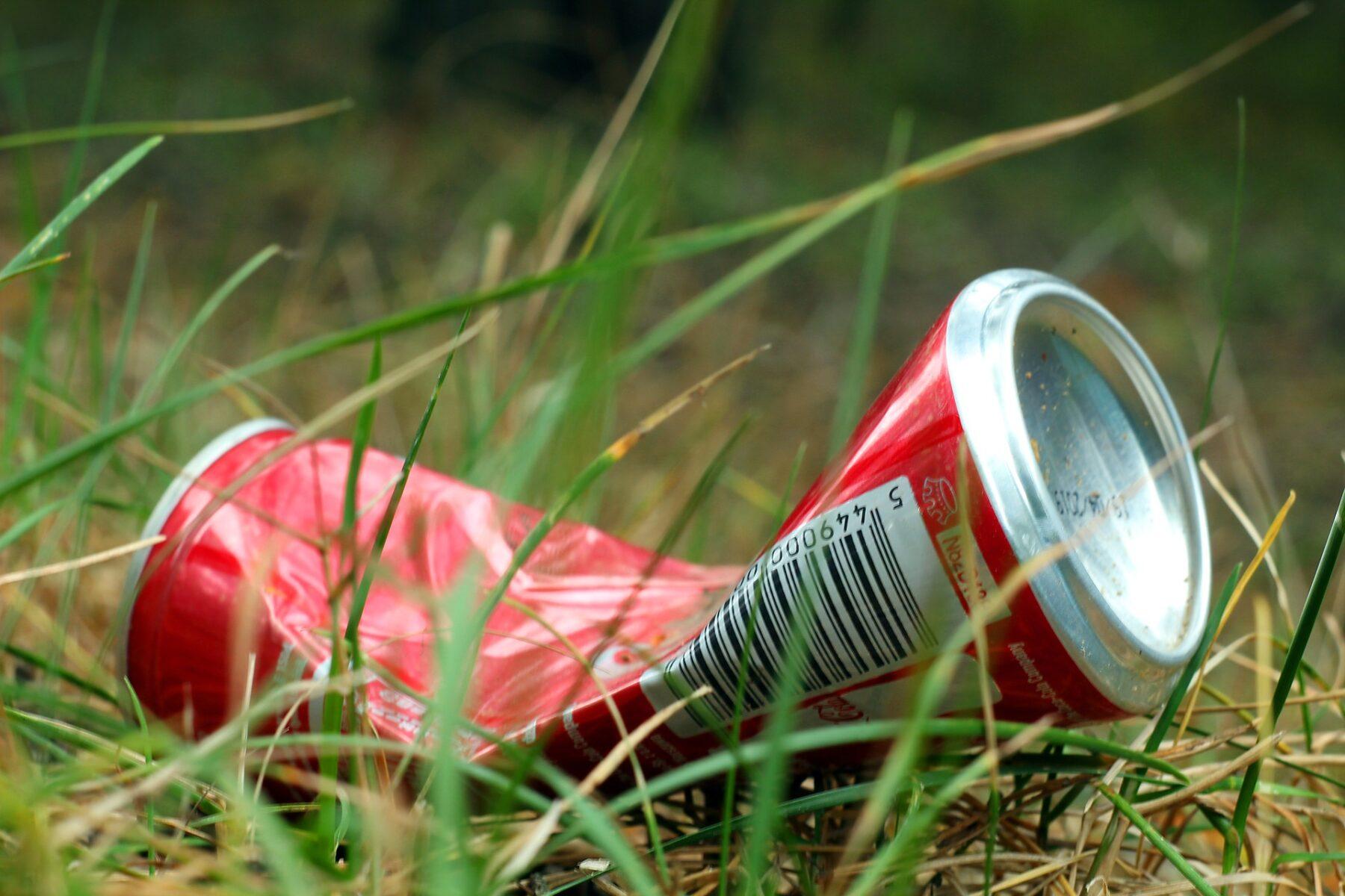 canette dechet environnement nature