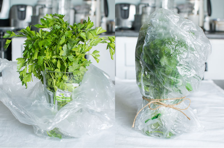 Fines herbes, herbs, fresh herbs, food waste, gaspillage alimentaire