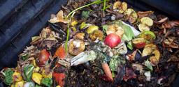 Conférence: Le compostage domestique : de l'assiette au jardin