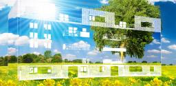 Mise en place d'un plan d'action en développement durable