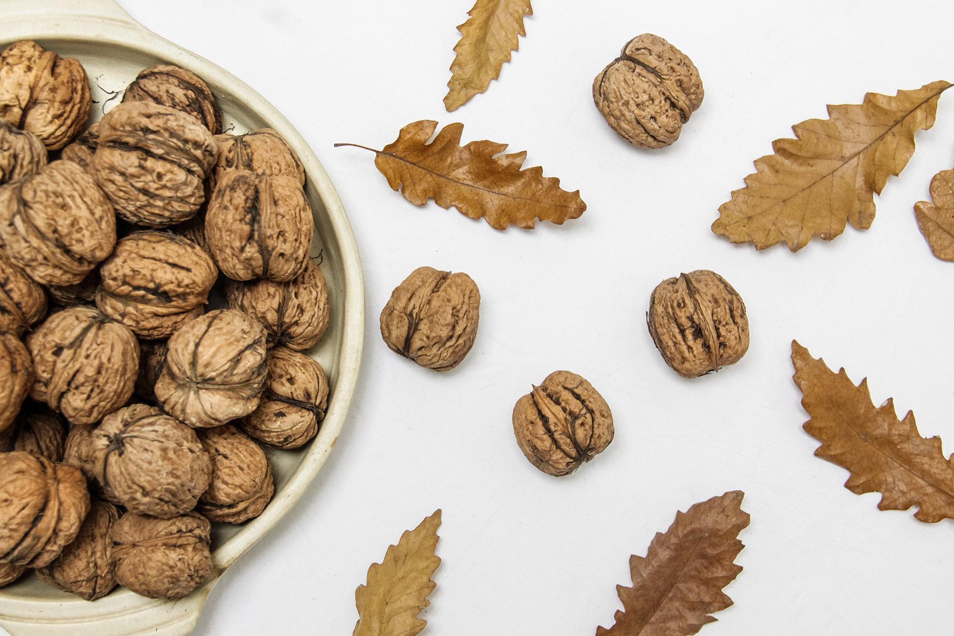 noix feuilles automne