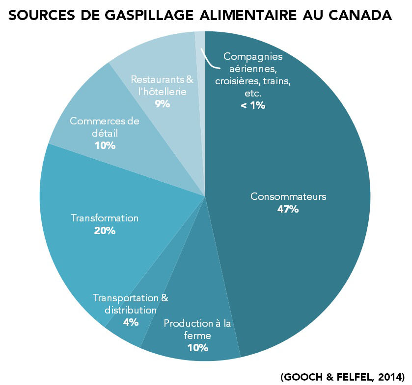 Sources de gaspillage alimentaire au Canada